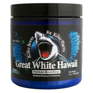 Great White Hawaii 4oz