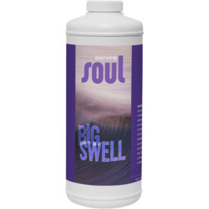 Soul Big Swell Pint