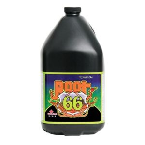 Root 66 250 ml (12/Cs)