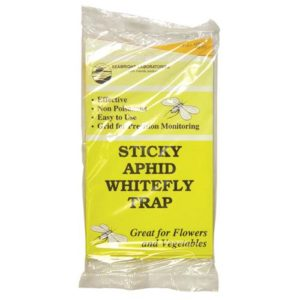 Sticky Whitefly Trap 3/Pack (1 = 24/Cs)