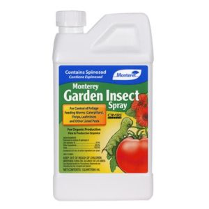 Insect Spray w/ Spinosad Gallon (4/Cs)
