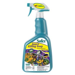 Safer Insect Killing Soap II Conc. Gallon (4/Cs)