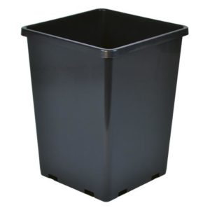 Rose Bucket Black 7.6 in x 7.6 in x 9.7 in (10/Cs)