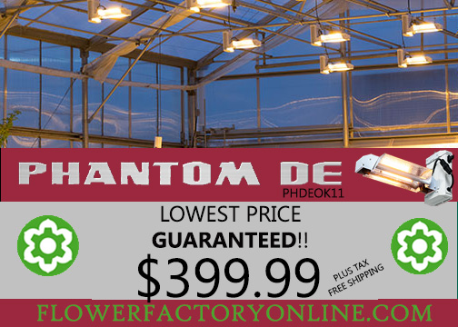 Phantom DE kit includes ballast, bulb and reflector. phdeok11 on sale now $399.99. Free shipping.